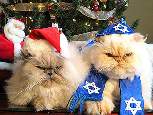 hanukkah-pet-2-animals