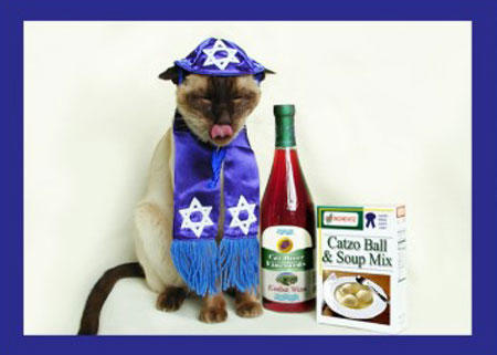 hanukkah-pet-matzo